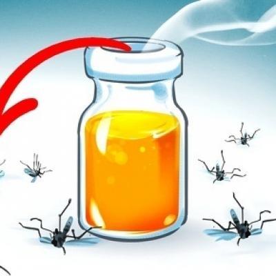 Tự chế ngay 8 loại nước hoa muỗi trong nhà có nhiều đến mấy cũng chạy đi hết