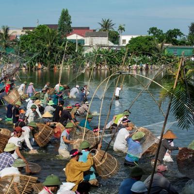 Hàng nghìn người dân tham gia hội nơm bàu Nghi Lộc trong thời tiết nắng nóng