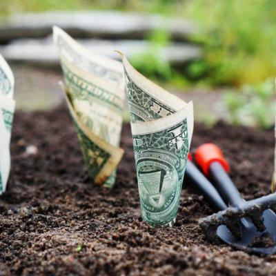 Lĩnh vực đầu tư này sẽ giúp bạn kiếm hàng triệu USD mà không phải đóng 1 xu tiền thuế